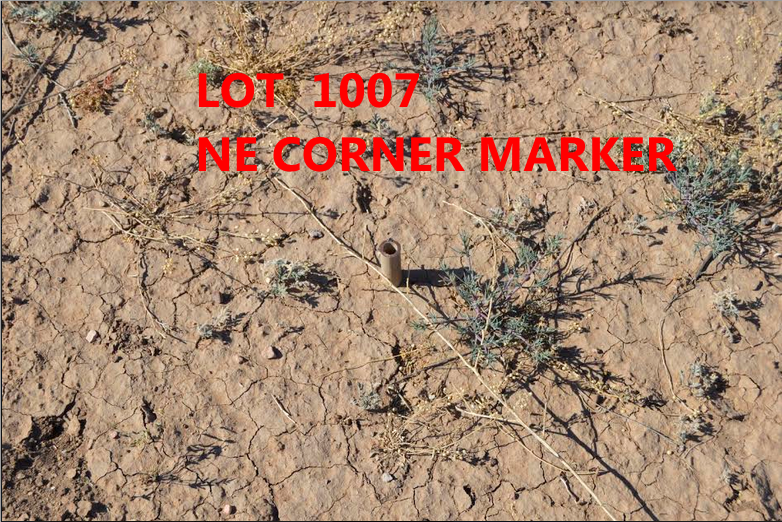 "Beautiful corner ""off the grid""  lot near the subdivision mailboxes-.35 acres- off the grid Douglas, Az"
