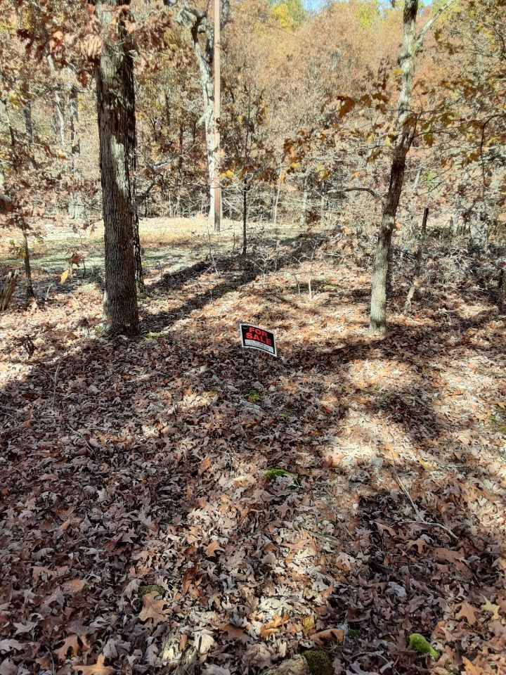 "Lot 23 Fantastic off grid lot in ""hotspot subdivision"" in Henderson, Ar -great for RV, Tiny Home-open zoning"