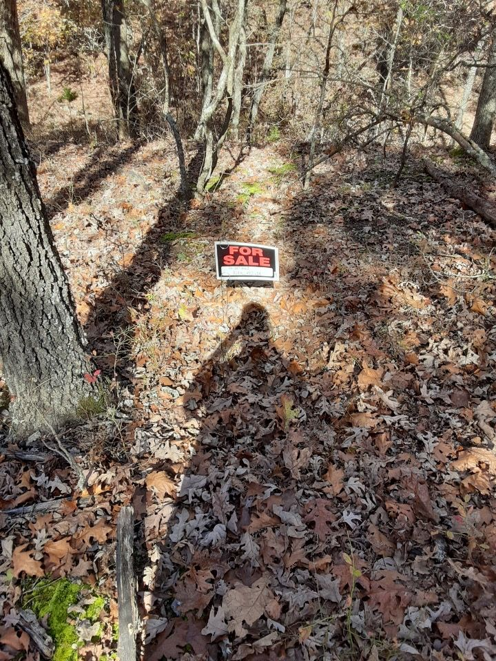 Rare Double lot in Henderson, Ar in upstart subdivision ! Get in on the action for an RV, Tiny Home, Cabin or camper