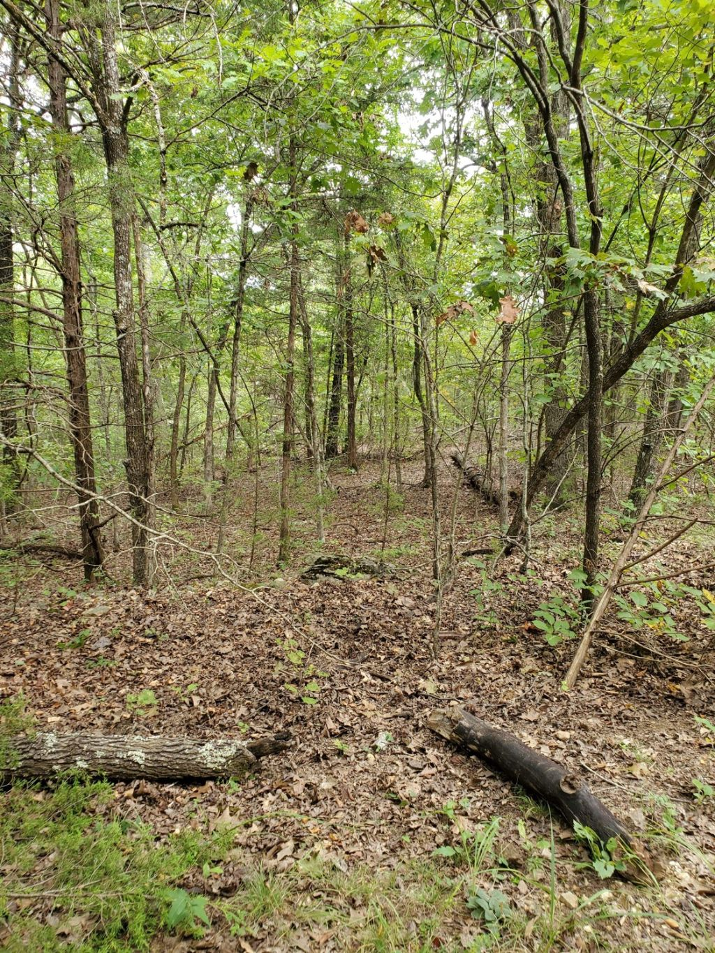 Open Zoning no restriction camping, RV , tiny home lot in Henderson, AR