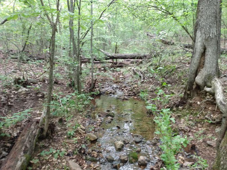 vh creek 1