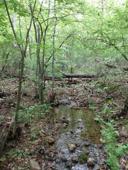 vh creek 11