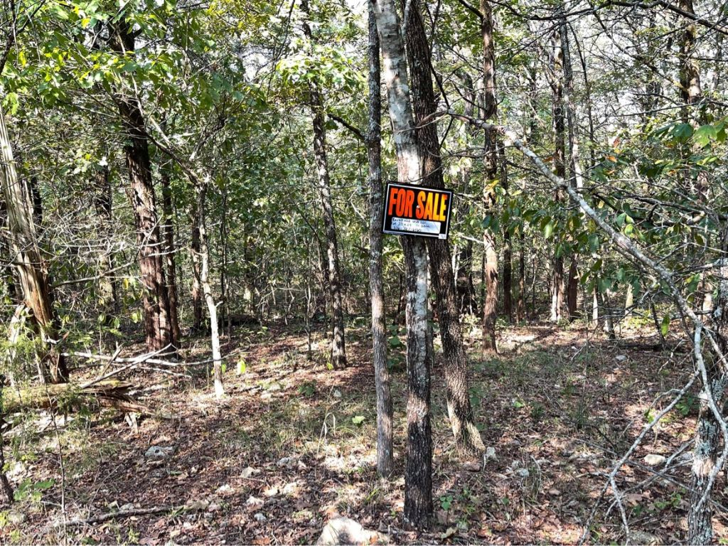 Vacant large open zoned lot (2) in Henderson, Ar in Baxter County-for RV, Camper or home